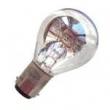 OLYMPUS(Japan)220V20W microscope bulb